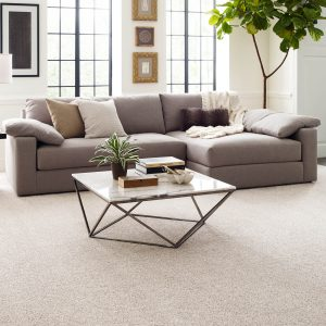 Comfortable carpet for living room   H&R Carpets and Flooring